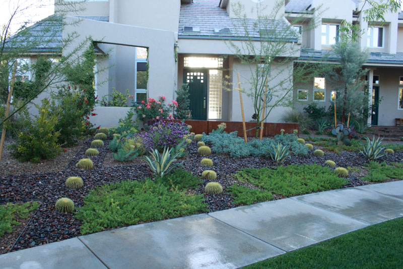 xeriscape front and back yard ideas on Pinterest ... on Xeriscape Yard Ideas id=26497